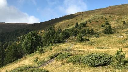 Über der Baumgrenze vor der Maurerberghütte