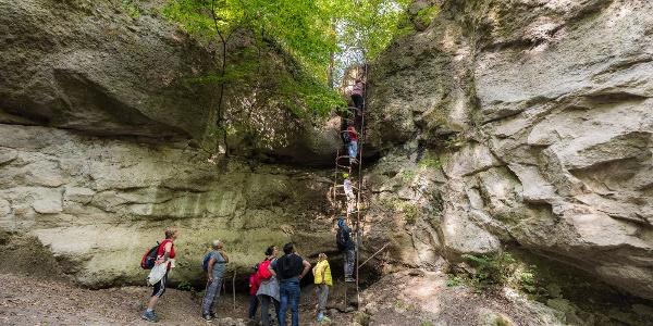 Rebrík v priekope mesačného svitu