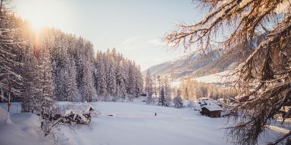 Verschneite Winterlandschaft im Bergdorf Reckingen