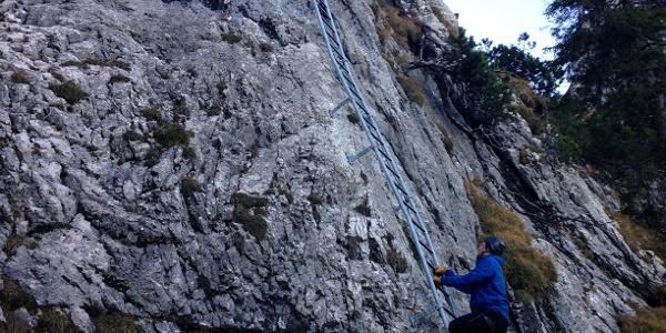 Die Leiter am Einstieg des Tegelbergsteigs.