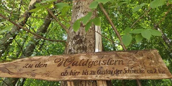 Wegweiser zu den Waldgeistern