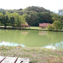 Pisztrángos tó