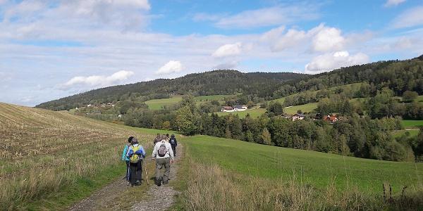 Weg von Maierhof nach Gneißen - im Hintergrund die Zeller Höhe