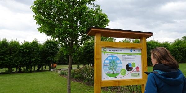 Schlosspark Pöllau: Start Klimazukunft-Weg im Herbst