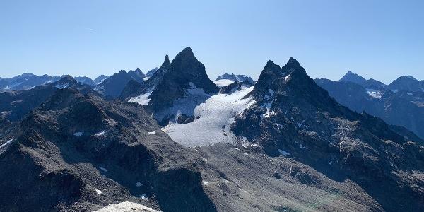 Großes Seehorn