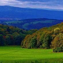 Herbstwald auf der Hohen Klinge/Trusetal