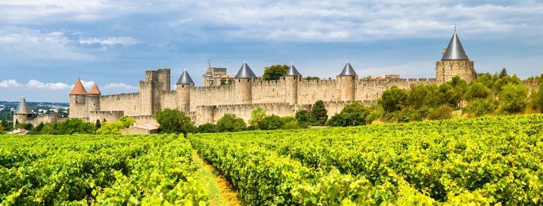 Die Mauern von Carcassonne vor Weinbergen