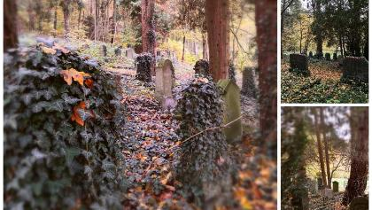 Jüdischer Friedhof im Oktober2020