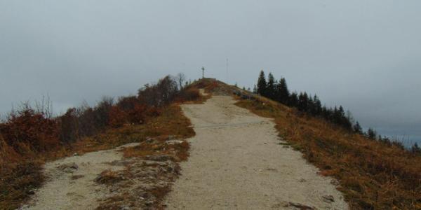 Über die Forststraße am Weg zum Zwölferhorn Gipfel