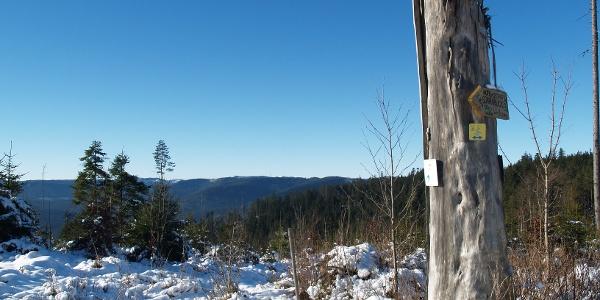 Blick zur Hornisgrinde im Winter