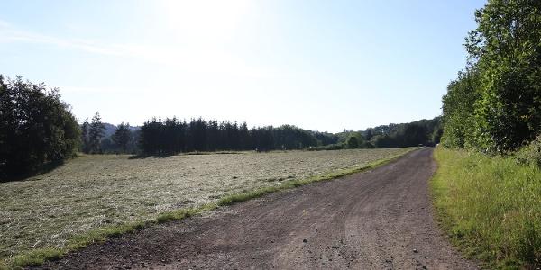 Ausblick auf Feld und Wiesen bei Kürrenberg