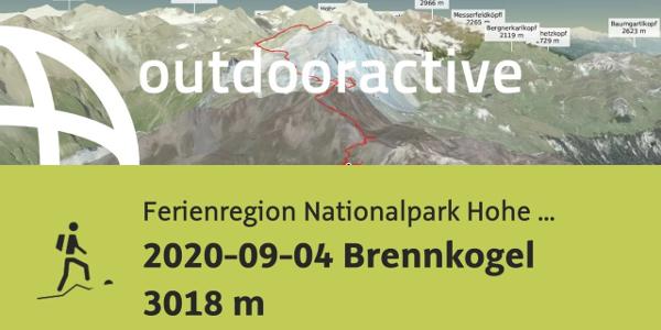 Bergtour in der Ferienregion Nationalpark Hohe Tauern: 2020-09-04 Brennkogel 3018 m