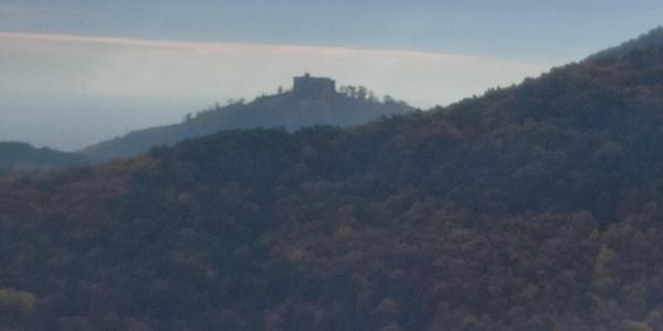 Blick zum Hambacher Schloss