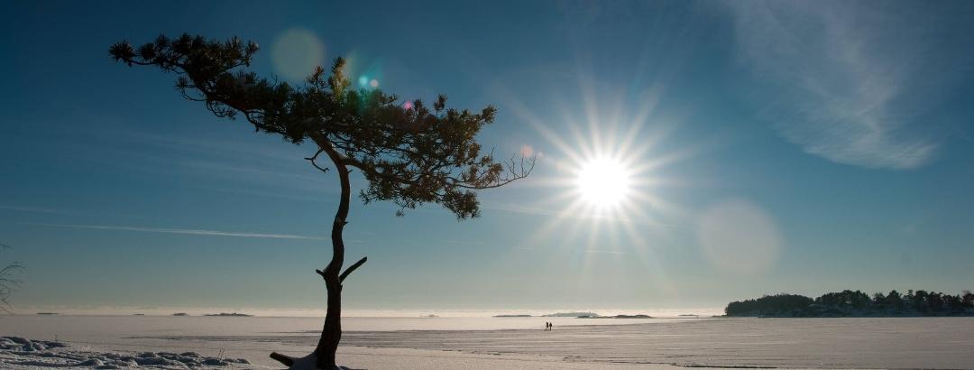 Die Region Helsinki im Winter