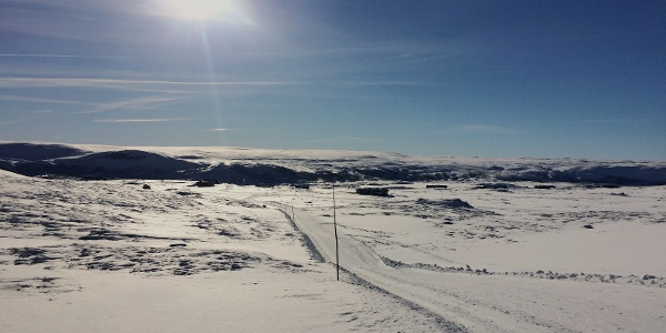 North of Ustaoset, view towards Hardangervidda