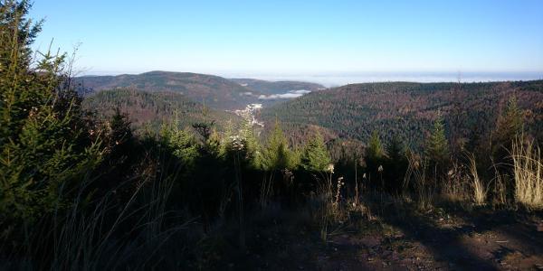 Ausblick am Schweizerkopf