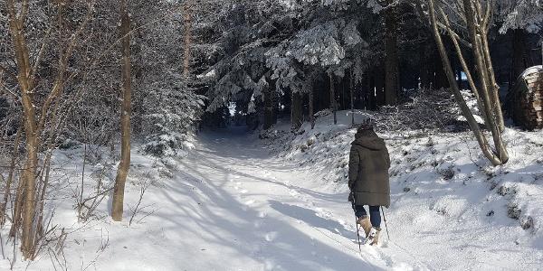 Masenberg Winterwandern