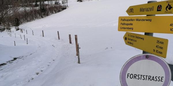 Mariazeller Pilgerweg nach Kirchberg
