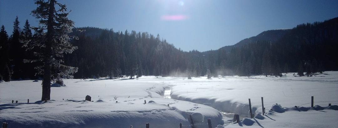 Winterwandern auf der Flattnitz