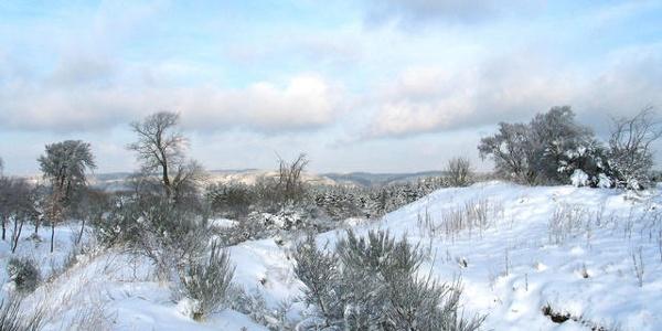 Dreiborner Hochfläche im Winter