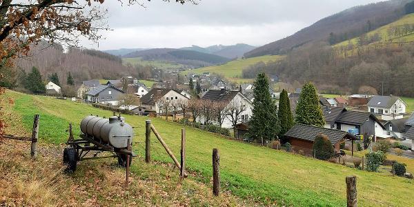 Zunächst abwärts den Aspaltweg nach Nenkersdorf - Blick ins Tal Richtung Walpersdorf