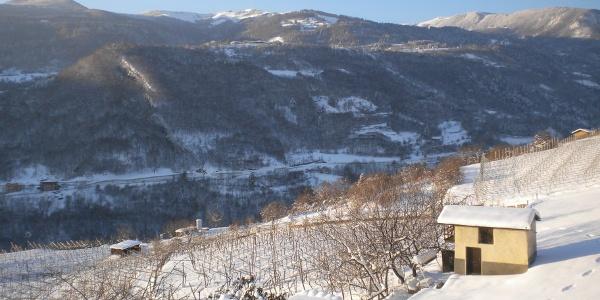 Panorama invernale delle campagne di Cazzano verso la Polsa