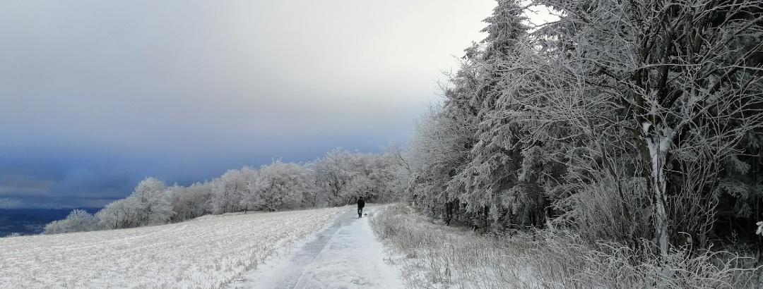 Winterwandern im Osterzgebirge