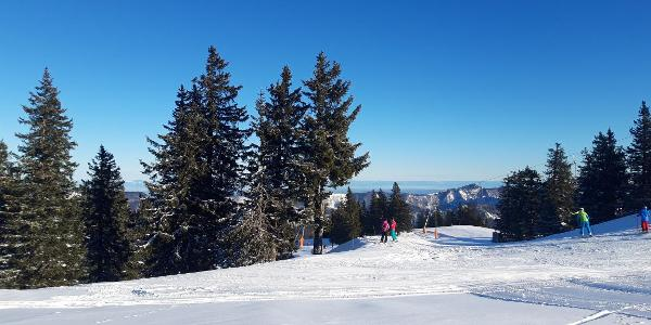 Zunächst queren wir (zu Beginn Richtung Kasberg Gipfel) die Skipiste
