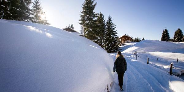 Winterwandern Bartholomäberg