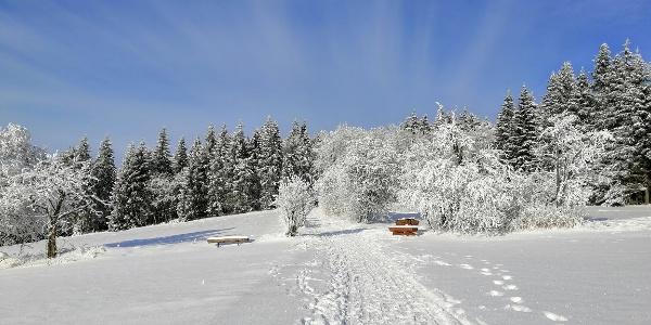 Winterwanderweg rund um Schellerhau
