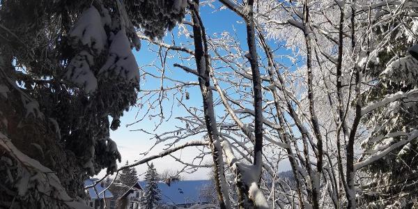 Los geht's - schon bei schönster Winterlandschaft am Parkplatz