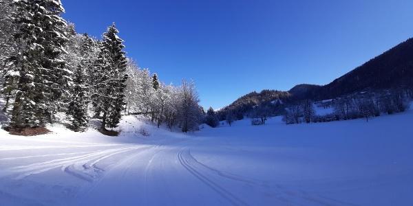 Kupljenik cross country skiing trail