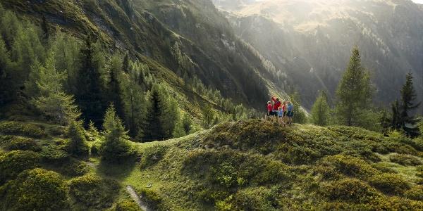 Wandern Dorfgastein