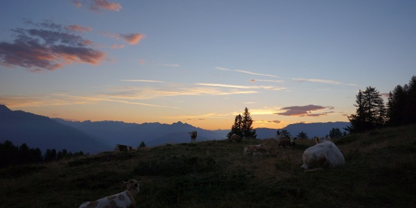 Wir starten früh bei der Dolomitenhütte und steigen über den Ellerweg auf...