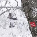 Profilový obrázok používateľa Natúrpark Írottkő Geschriebenstein