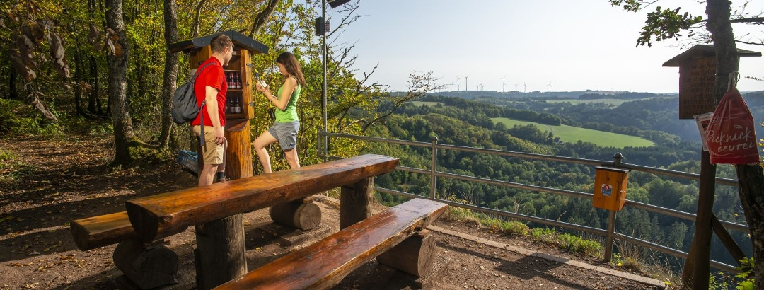Rastplatz am Weinschrank mit toller Sicht ins Tal und Nahesteig Servicestation