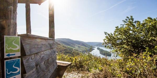 Rheinblick auf dem Rhein-Wisper-Glück Weg