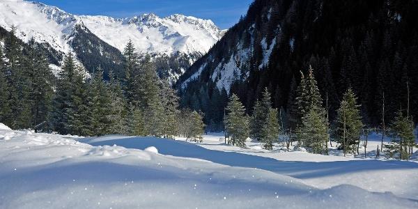 Der Wanderweg führt in die Wunderlandschaft des hinteren Seebachtales.