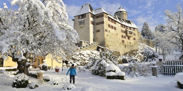 Winterwandern im Schlosspark Matzen