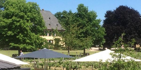 Weinlounge im Park