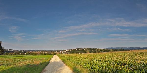 Der Weg nach Altenburg, Rundweg Sickenhausen