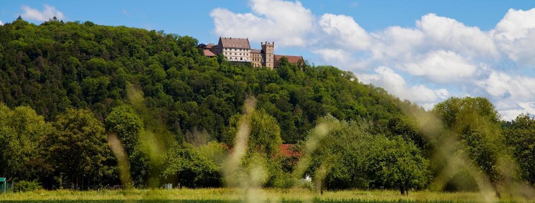 Hotel Schloss Weitenburg