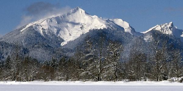 Scheinbergspitze von Osten
