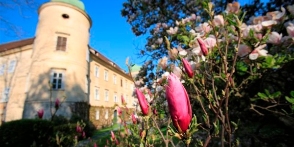 Schloss Reitenau bei Grafendorf