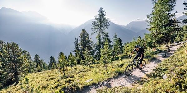 Bartiges Bödele Trail