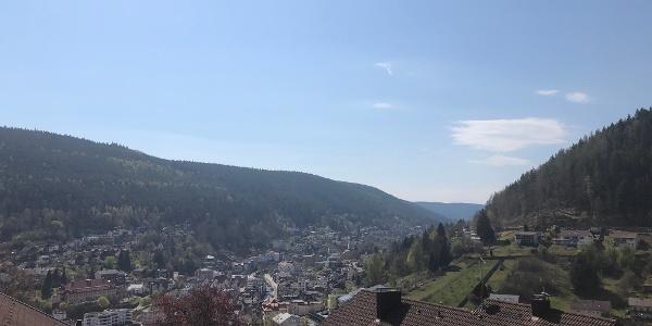 Paulinenhöhe Bad Wildbad