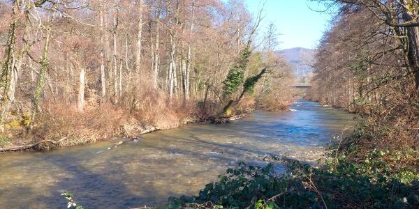 Mündung der Wehra in den Hochrhein