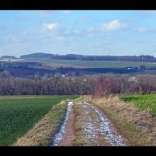 Landschaft Richtung Nordwesten mit Glehn vom Weg von Hostel nach Glehn