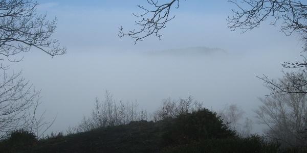 Ochtendlijke mist boven de Semois-vallei
