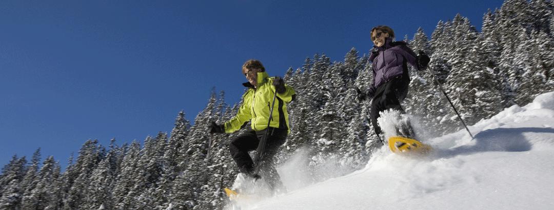 Schneeschuhtour Im Tellin